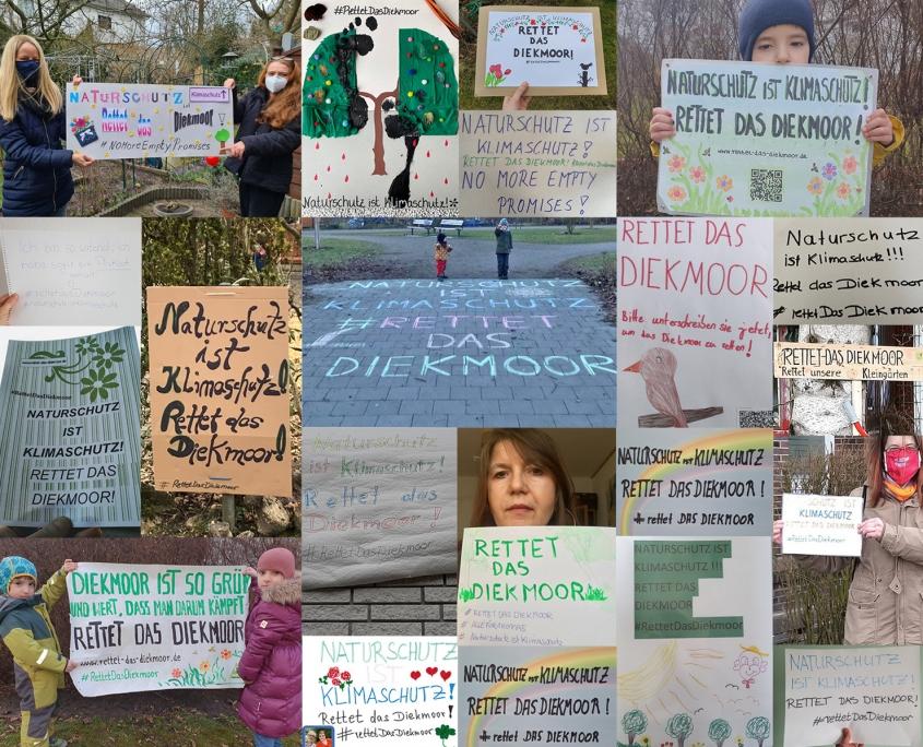 Protestschilder: Naturschutz ist Klimaschutz! Rettet das Diekmoor! #RettetDasDiekmoor